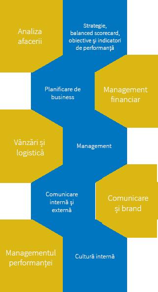 Consultanță de management