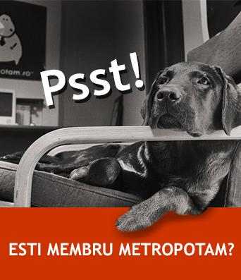 Membru Metropotam