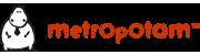 Metropotam